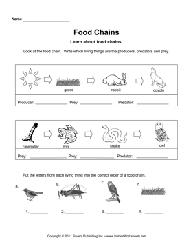 Food Web Worksheet Cut And Paste Copy of science review week - lessons ...