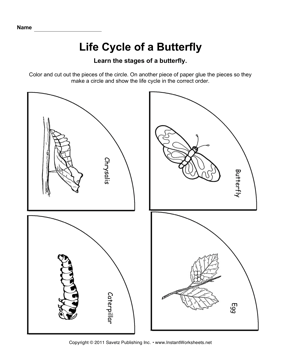 Life Cycle Butterfly — Instant Worksheets