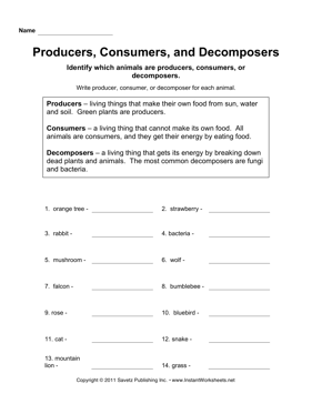 producer consumer decomposer worksheet printable - tisnephole49's soup